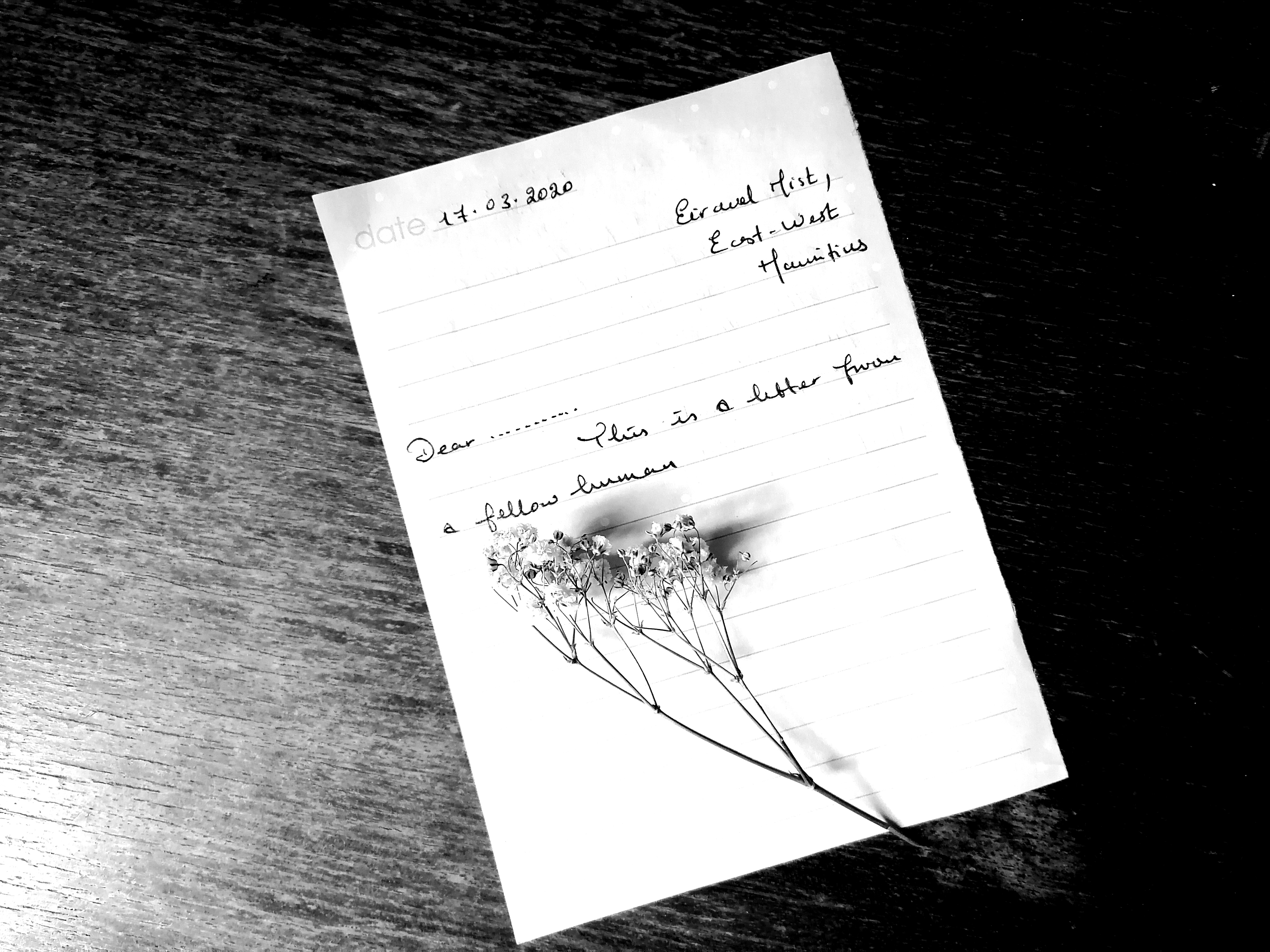 Black and white photo of a withered flowered branch on a handwritten letter note,  and pen